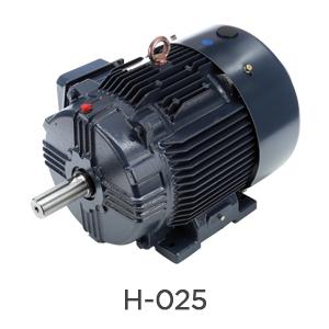 H-025