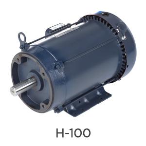H-100